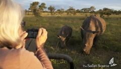 Watching Rhinos Close Up on a Game Drive in Zimbabwe