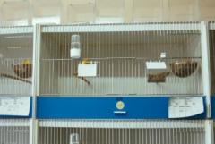 grafboxen für vögel