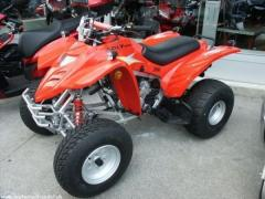 ADLY ATV 300 Quad