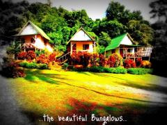 Bungalow Bungalows Koh Chang ko TP HUT Thailand Thai Beach